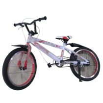 Bicycle 20 inch