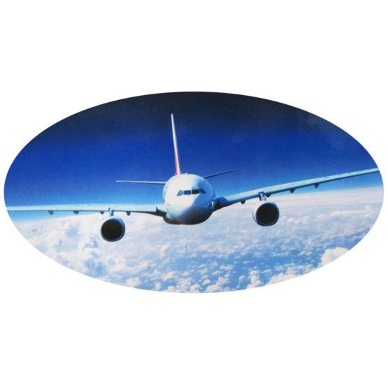 Own Air Plane [80,000] (9)